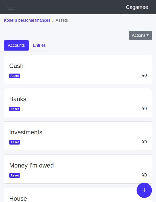 Asset accounts layout example in Cagamee